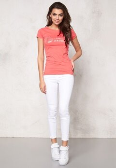 Franklin & Marshall Tshirt Jersey Round Coral Peach Bubbleroom.no