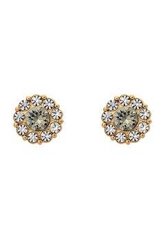 LILY AND ROSE Petite Miss Sofia Earrings Black Diamond Bubbleroom.se