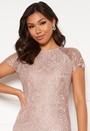 Scallop Lace Midi Dress