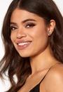 Noble Crystal Earrings