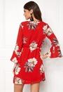 Glans-8 Dress