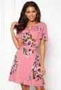 Birdo S/S Dress